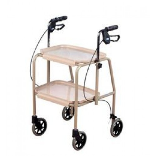 Walking Trolley with Brakes