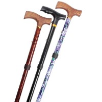 walking sticks